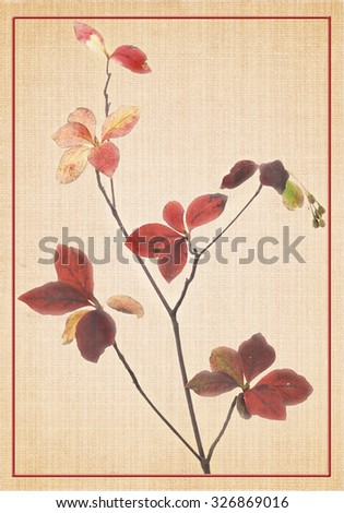 Autumn leaves on canvas effect.  - stock photo