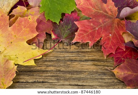 autumn leaves on the background of a old wood floor - stock photo