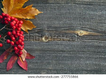 Autumn leaves  on wooden background top view texture - stock photo