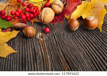 Autumn Leaves over rustic wooden texture background with copy space