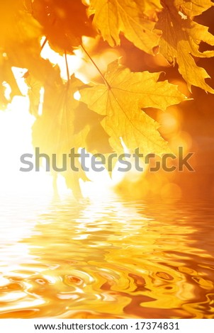 Autumn leaves reflected in rendered water