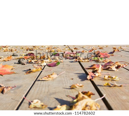 autumn leaves scattered on the wooden floor isolated on white background - stock photo