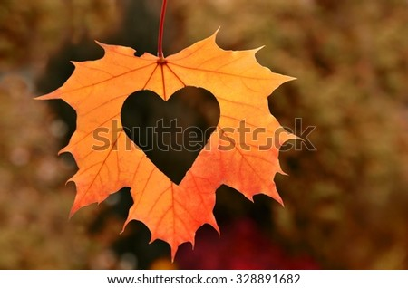 Autumn Leaves With Heart. Fall Background. Nature Card For Love.