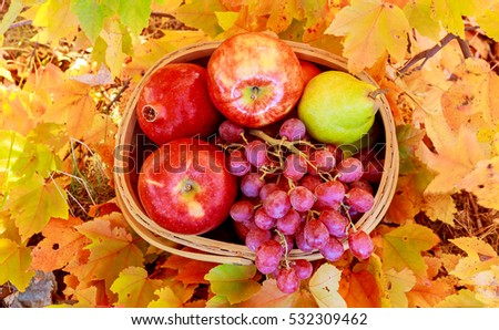 autumn leaves yellow apples grapes grenades basket of apples and ...
