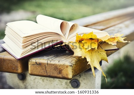 Autumn love - stock photo