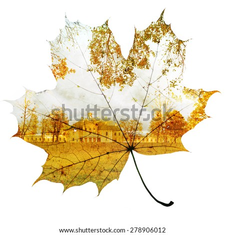 autumn maple leaf mixed with trees and sky, double exposure photo - stock photo