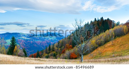 Autumn misty morning mountain panorama with haystack and stark bare tree in front (Carpathian Mt's, Ukraine). Four shots stitch image. - stock photo