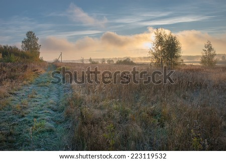 Autumn misty morning. Sun beams through tree. Grass covered with frost and dew - stock photo