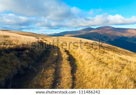 Autumn misty mountain view with country road (Carpathian Mt's, Ukraine). - stock photo