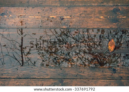 Autumn mood. Autumn puddle with fallen leaves. - stock photo