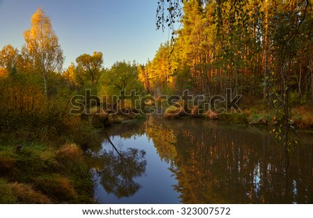 Autumn morning ashore the quiet forest river with trees illuminated from beneath by a morning sun