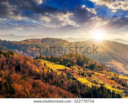 autumn mountain landscape. hillside with pine and Colorful foliage aspen trees near green valley in evening light - stock photo