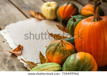 Autumn nature concept. Fall vegetables on wooden texture background