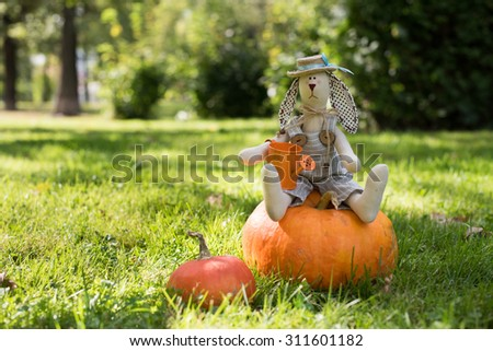 Autumn nature concept. Toy rabbit with pumpkins and watering pot - stock photo