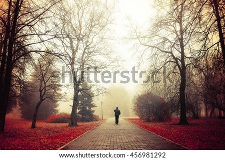 Autumn nature -foggy autumn park. Autumn alley in dense fog with lone passerby- foggy autumn landscape with autumn trees and red fallen leaves. Autumn alley in dense autumn mist. Soft filter applied. - stock photo
