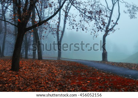 Autumn nature in the fog - foggy autumn view. Autumn alley in dense fog - foggy autumn landscape with bare autumn trees and red fallen leaves. Autumn alley in dense autumn fog. Soft focus applied. - stock photo