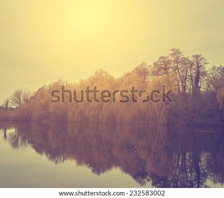 Autumn nature scene - stock photo