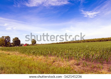 Autumn on american countryside - stock photo