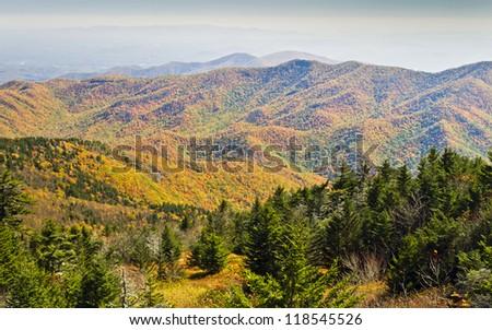 Autumn on Mount Mitchell - stock photo