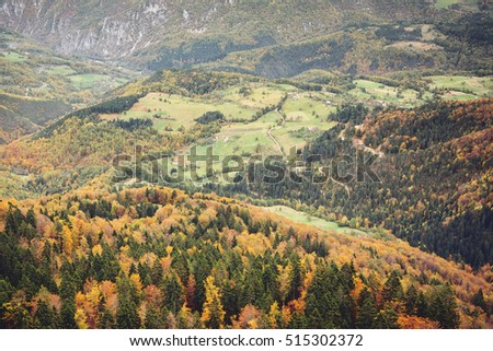 Autumn on mountain Tara,Serbia