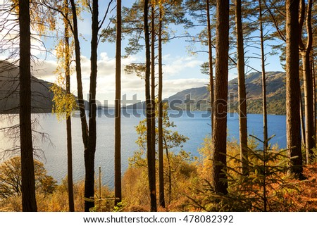 Autumn on the banks of Loch Lomand, Scotland