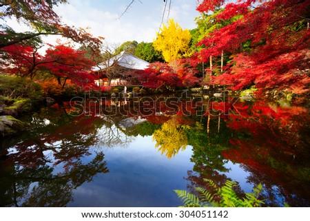 Autumn park in Daigoji Temple, Kyoto Japan - stock photo