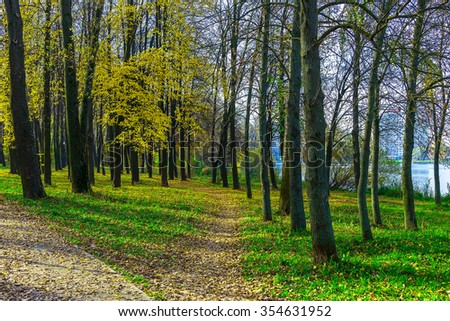 Autumn Park with Road and Footpath Covered Dry Foliage Among Trees on Green Grass - stock photo