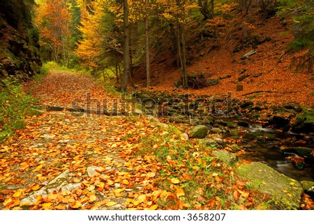 Autumn pathway in the valley