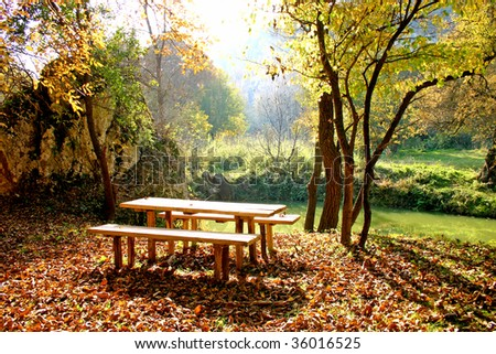Autumn picnic in the nature in yellow and orange color tones. Picnic table and two benchs. - stock photo