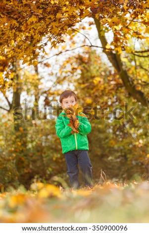 Autumn portrait of cute boy in nature (shallow DOF) - stock photo
