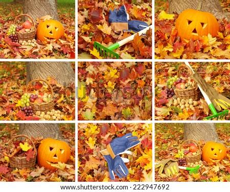 autumn pumpkin, halloween torchbearer - stock photo