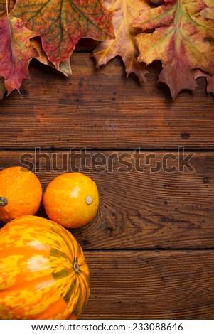 Autumn pumpkins - stock photo