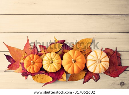 Autumn pumpkins - stock photo