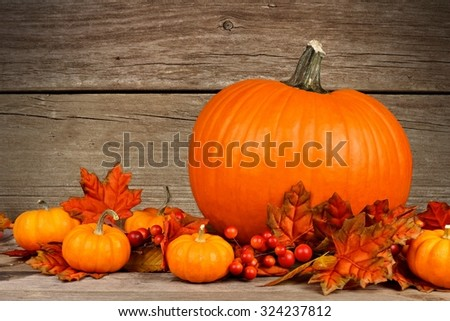 Autumn pumpkins and leaves against a rustic wood background