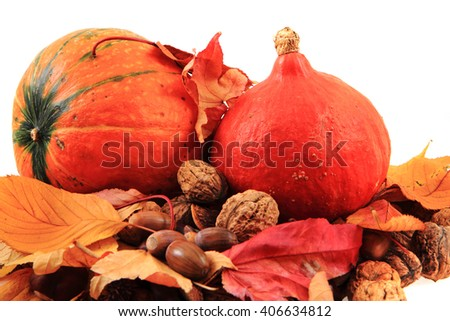 autumn pumpkins and leaves isolated on the white background - stock photo