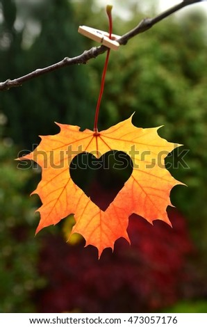 Autumn red and orange leaf with heart. Fall love.