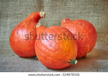 Autumn red pumpkins on a burlap background in a rustic style. Beautiful autumn Pumpkins Halloween background.