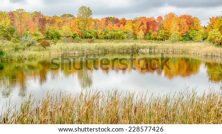 Autumn Reflection on North Dogwood Pond, Rouge River, Woodland Hills Nature Park, Farmington Hills, Michigan - stock photo