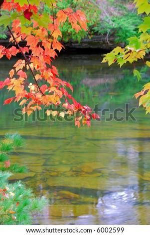 Autumn River - stock photo