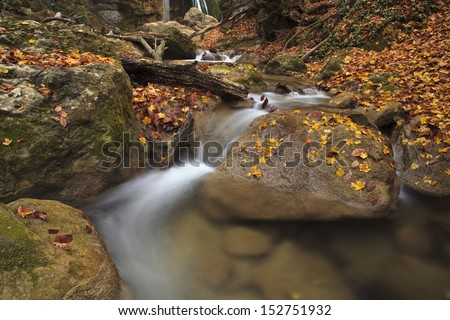 Autumn river in the forest