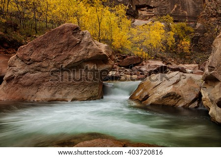 Autumn river in Zion National Park