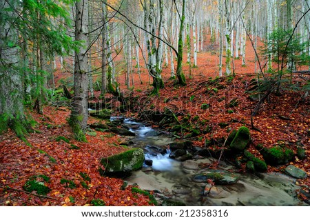 Autumn river,red leaves - stock photo