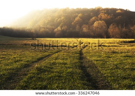Autumn Road background  - stock photo