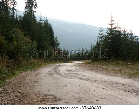 autumn road forest fir tree rough mountain atv terrain meadow suv hill 4x4 - stock photo