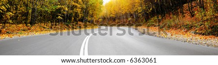 autumn road panorama - stock photo