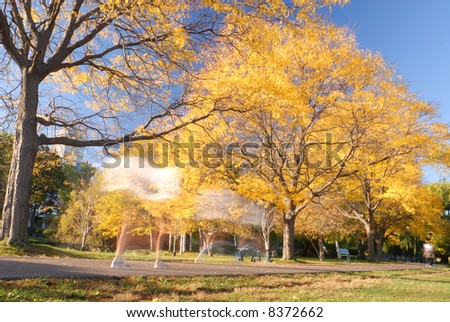 Autumn Runners - stock photo