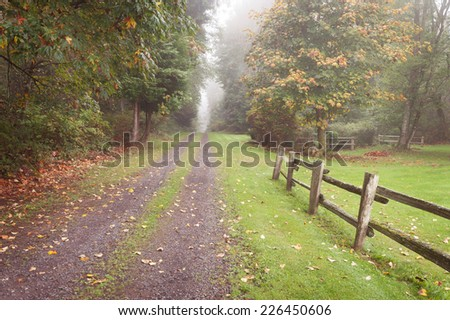 Autumn Rural Driveway. A split rail cedar fence leads visitors down the road on a lovely fall day.