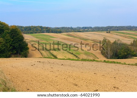 Autumn rural landscape with trees, blue sky and white clouds - stock photo