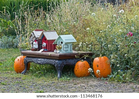 Autumn scene with bright birdhouses and pumpkins - stock photo