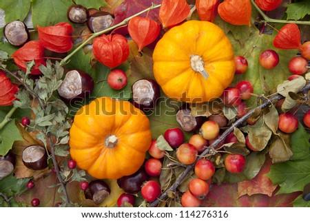 Autumn scene with pumpkins - stock photo